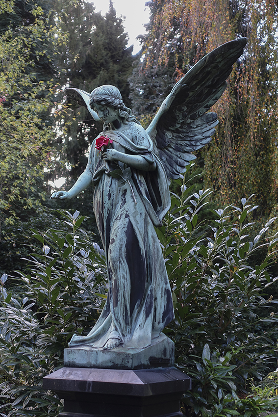Ohlsdorfer Friedhof Engel Grab Johnson mit roter Rose