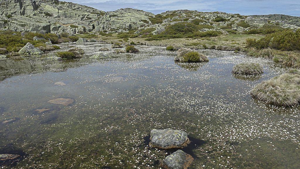 Naturpark Serra da Estrela I Besuch in einem Schieferdorf Naturpark Serra da Estrela